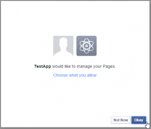 Click 'Okay' to give your Facebook App permission to manage your Pages.